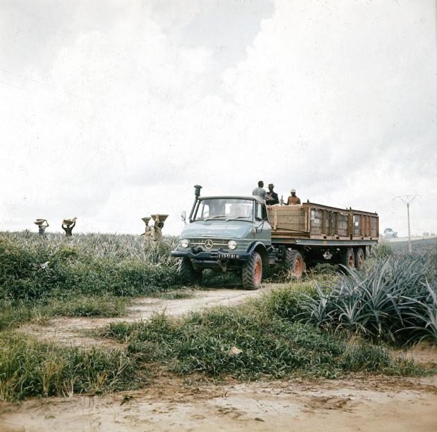 Unimog Baureihe 416 Sattelschlepperversion mit Auflieger im landwirtschaftlichen Transporteinsatz