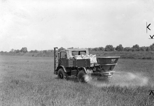 Unimog Baureihe 411 mit Mähbalken und Amazone Einhängestreugerät bei der Ausbringung von Kalksalpeter