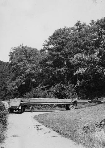 Unimog Baureihe 411 beim Langholztransport