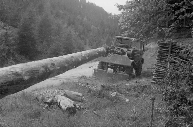 Unimog Baureihe 411 beim Rücken von Baumstämmen