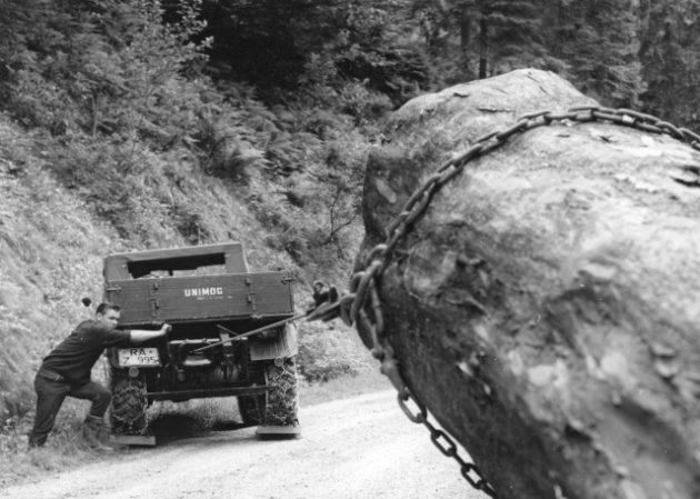 Unimog Baureihe 411 beim Rücken von Baumstämmen mit der Heckseilwinde