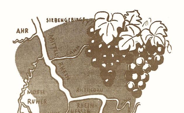 UCOM Ratgeber Weinbau Grafik